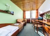 Jednolôžková izba - Trenčianske Teplice Hotel Flóra