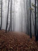 Jeseň pod Inovcom.